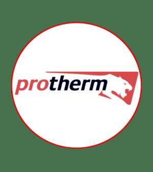 Запчасти для котлов Protherm